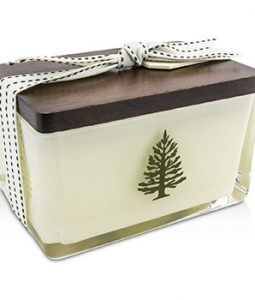 THYMES SEASONAL AROMATIC CANDLE (2 WICK) - FRASIER FIR 395G/14OZ