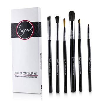 SIGMA BEAUTY SPOT ON CONCEALER KIT PROFESSIONAL BRUSH COLLECTION  6PCS